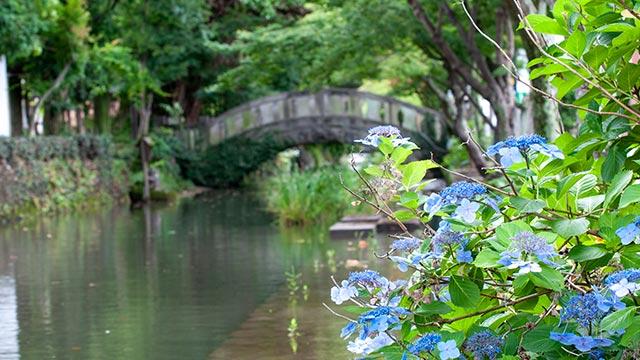 松原神社の北口の橋の東側