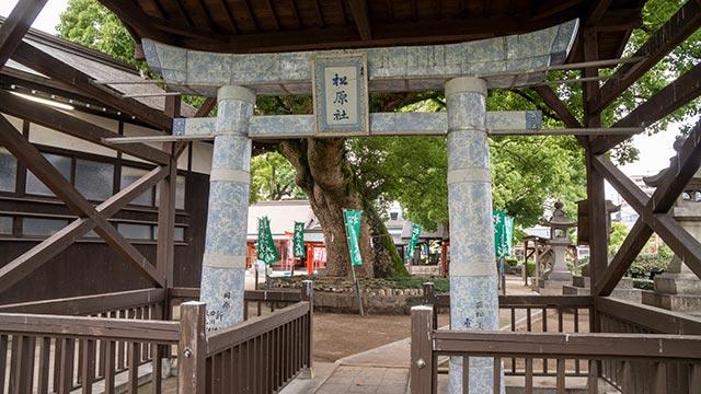 松原神社の鳥居