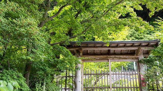 伊東玄朴旧宅の門