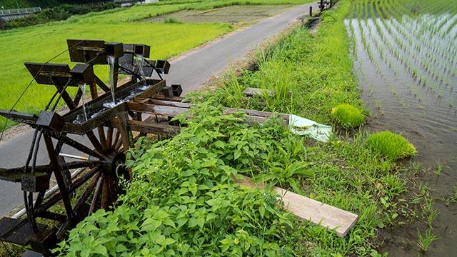 町切水車と田んぼ