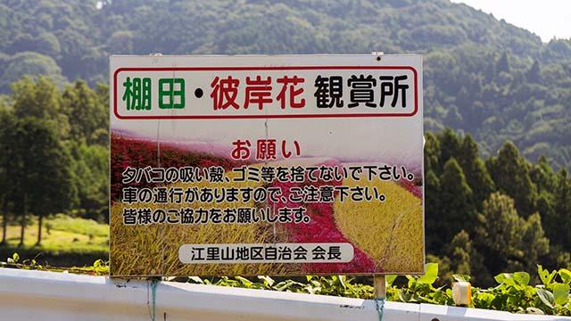 江里山の棚田の鑑賞所