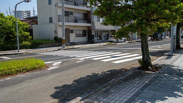 早稲田佐賀中学校・高等学校の正門近くの横断歩道