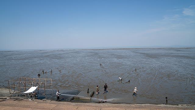 鹿島の干潟