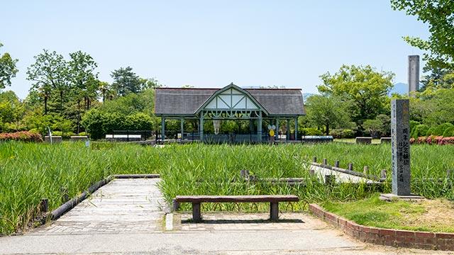神野公園のとんぼ池