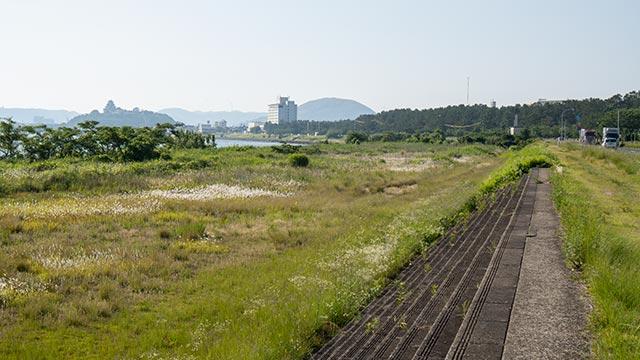 松浦川河川敷から見える唐津城